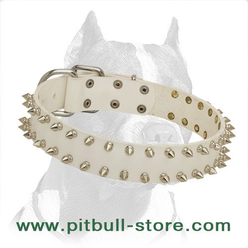 Delicate Pitbull Dog Collar in White with Two Rows of Spikes