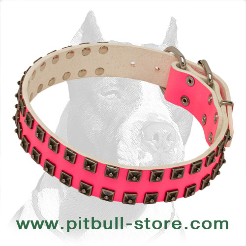 Pink Leather Pitbull Dog Collar with Dotted Studs