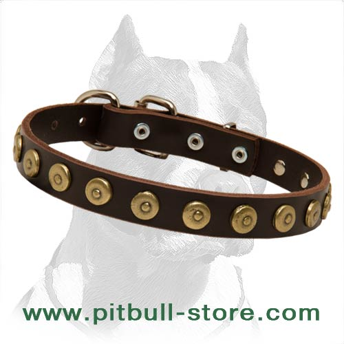 Pit Bull Gorgeous Wide Leather Dog Collar with Dotted Circles