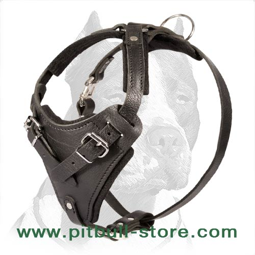 Sturdy Agitation/Protection Leather Dog Harness for Pitbull