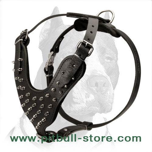 Stunning Design Spiked Leather Dog Harness for Pitbull