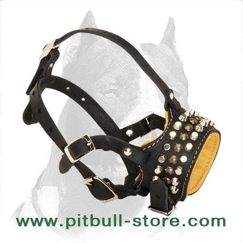 Royal Pyramids with Studs Leather Muzzle for Pitbull