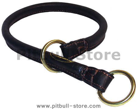 Great Rolled Leather Dog Collar/Choke Collar for Pitbull