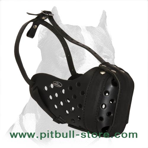 Pitbull Agitation Leather Muzzle
