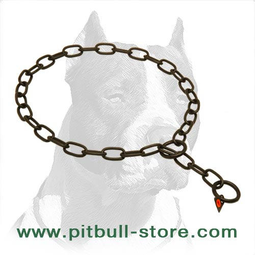 Best-Fitted Pitbull Dog Steel Collar