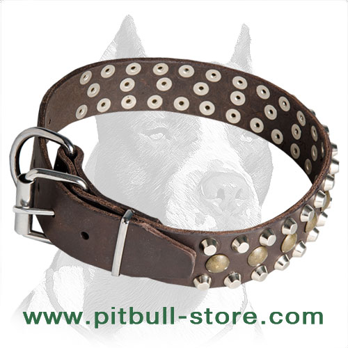 Studded Pitbull Dog Collar for Daily Walks