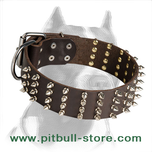 Extra Wide Pitbull Dog Collar with Spikes