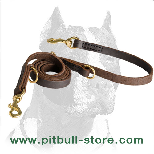 Premium Quality Pitbull Dog Collar with Two Snap Hooks