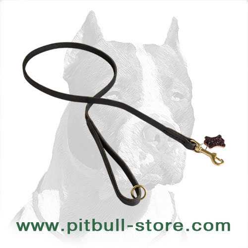 Handmade Leather Pitbull Dog Leash for Walking and Training