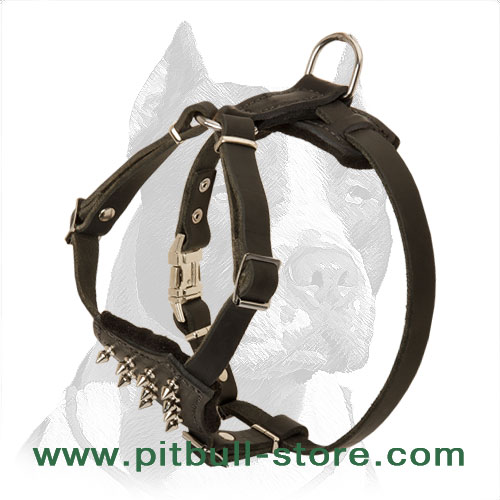 Reliable Leather Pitbull Puppy Harness