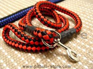 dog leash for walking