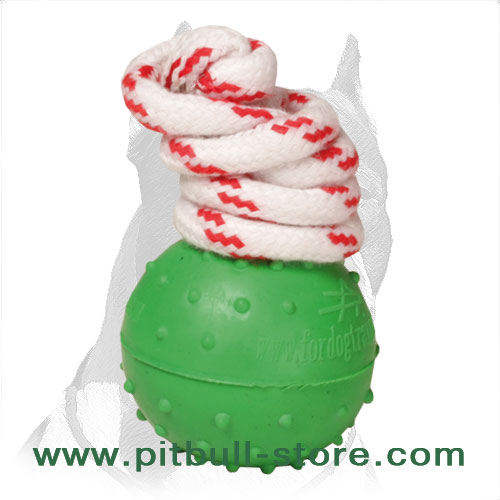 'Joy & Train' Pitbull Dog Solid Rubber Ball