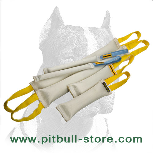 Big Pitbull Training Set of Ultra-Strong Fire Hose Bite Tugs