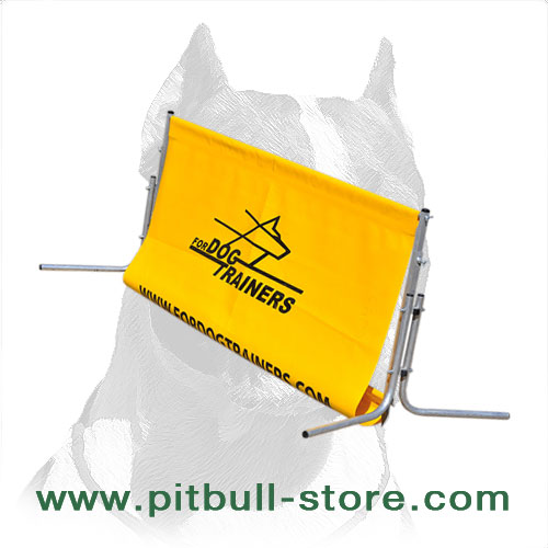 Pitbull Training Lightweight Schutzhund Jump