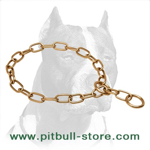 Super Strong Pitbull Dog Curogan Choke Collar