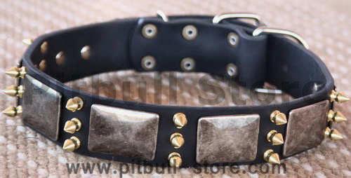 Gorgeous War Dog Leather Dog Collar-massive plates+ brass3 spike