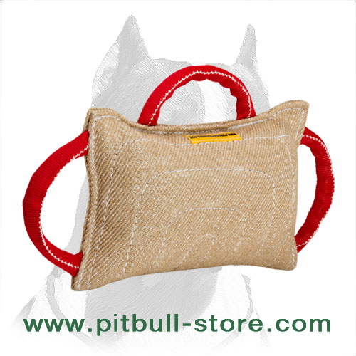 Stitched Pitbull Dog Bite Pillow for Training