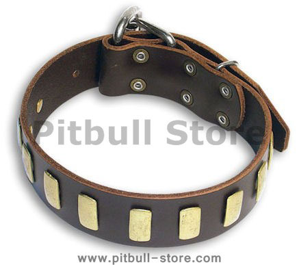 leather dog collar for pitbulls