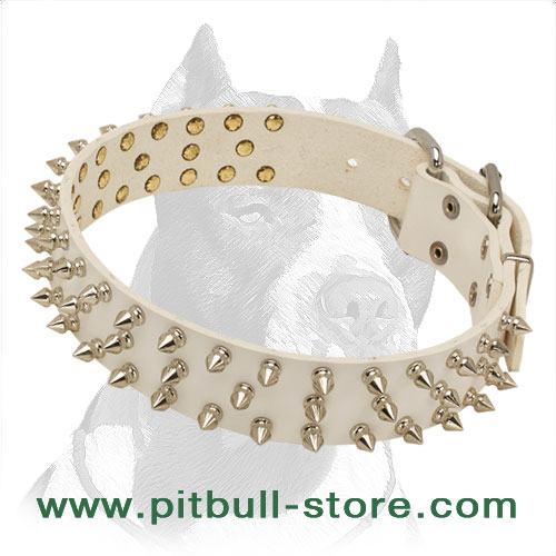 Reliable Leather Pitbull Dog Collar in White with Spikes - Click Image to Close