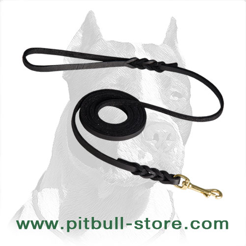 Soft Premium Leather Pitbull Dog Leash with Braided Ends