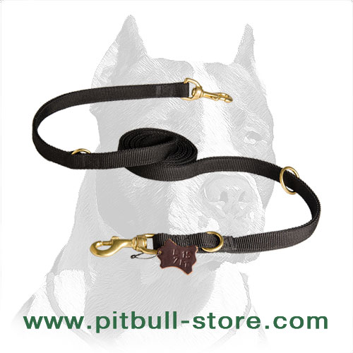 Strong Nylon Pitbull Dog Leash for Practical Owners
