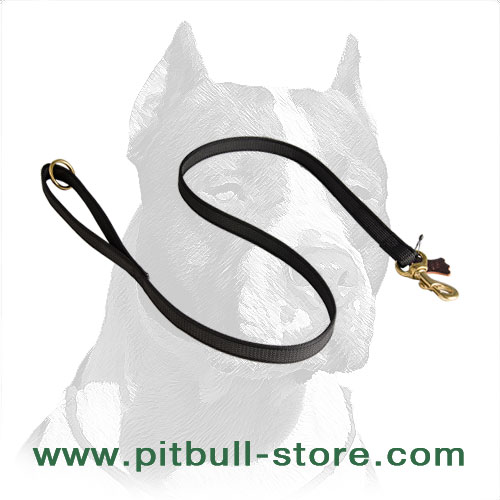 Comfy and Durable Nylon Pitbull Dog Leash for Walks and Training