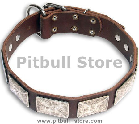 Handmade PITBULL Brown dog collar 18 inch/18'' collar - c83