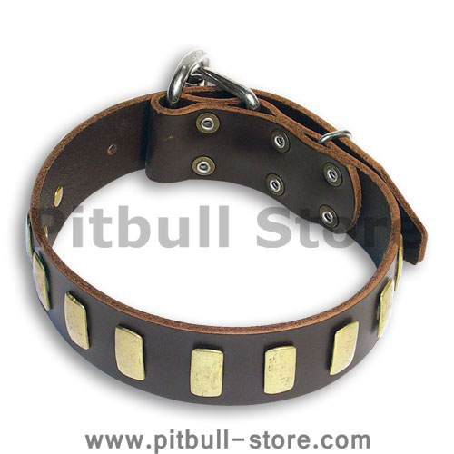 Custom Leather Brown collar 26'' for PITBULL /26 inch dog collar - S33p
