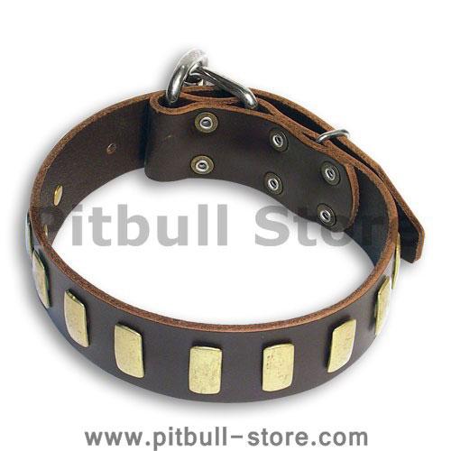 Custom Leather Brown collar 26'' for PITBULL /26 inch dog collar - S33p