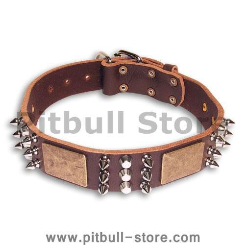 PITBULL Spiked  Brown collar 23'' /23 inch dog collar-C86