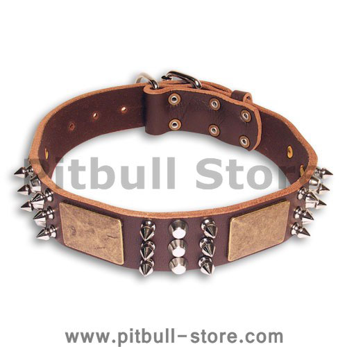 Leather Spiked  Brown collar 25'' for PITBULL /25 inch dog collar-C86