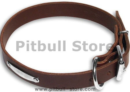 Handcrafted  PITBULL Brown dog collar 18 inch/18'' collar -C456
