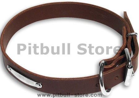 Dog Name ID Plate Brown collar 25'' for PITBULL /25 inch dog collar-C456
