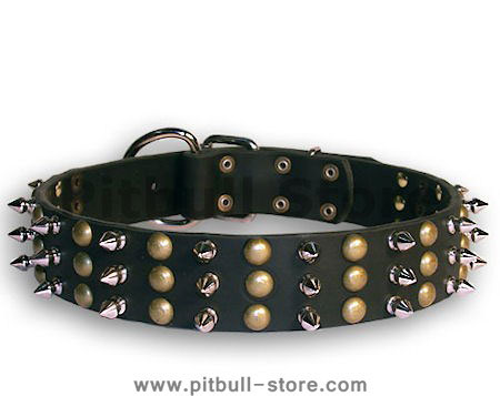 PITBULL Studded Black dog collar 20 inch/20'' collar - S59