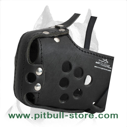 Strong Pitbull Muzzle for Agitation Training