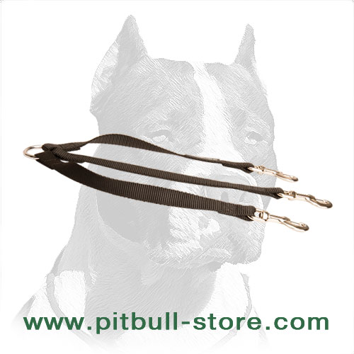 Strong Pitbull Triple Dog Leash Made of Nylon