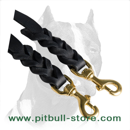 Leather double leash for walking 2 Pitbulls