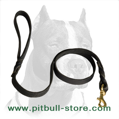 Pitbull dog leash with gold color snap hook