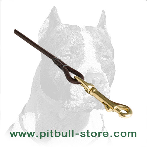 Durable leather Pitbull leash with round edges for comfort