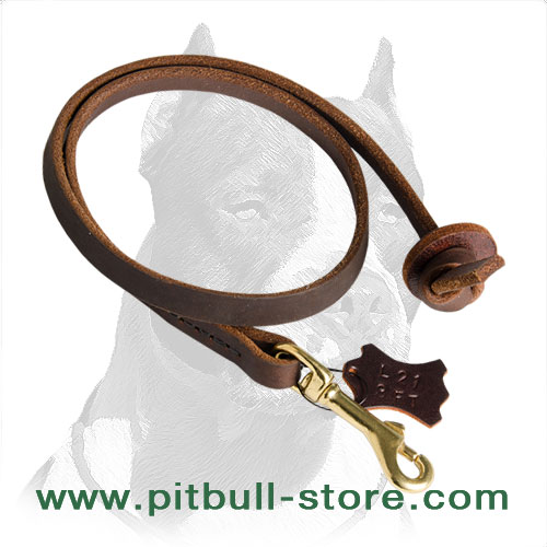Super comfortable and reliable leather Pitbull leash 1/2 inch wide