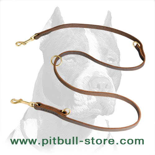 Leather Pitbull leash with solid brass snap hook