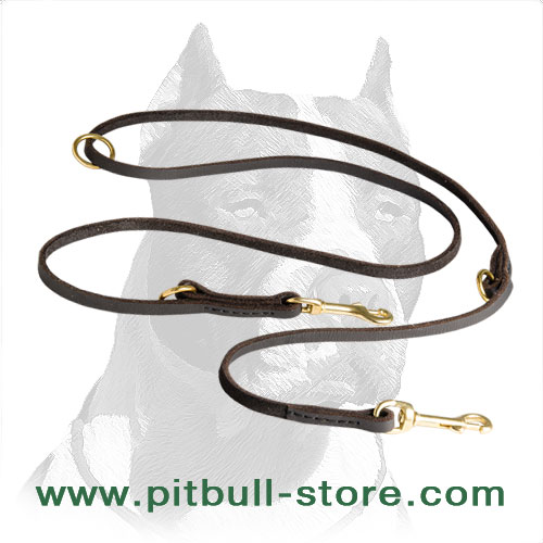 Comfortable Pitbull leash with solid brass snap hook