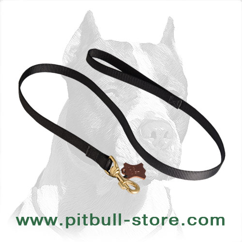 Pitbull dog leash 2 ply nylon stitched