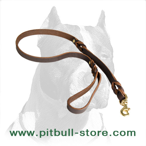 Leather dog leash hand-braided with solid snap hook