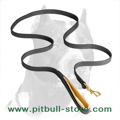 Leather dog leash with corrosion   resistand hardware