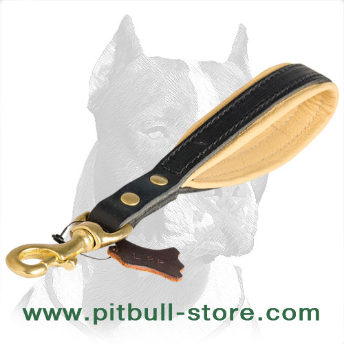 Handmade Pitbull dog leash
