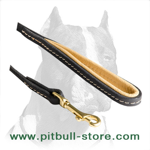 Pitbull dog leash with golden brass snap hook