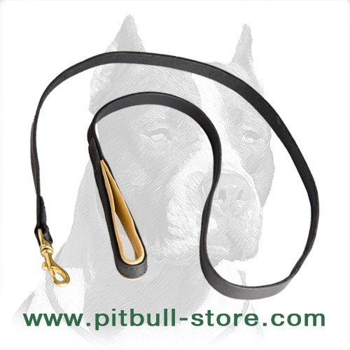Pitbull leash super easy in use