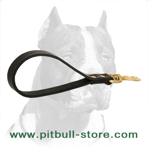Pitbull dog leash with rust & corrosion resistant fittings