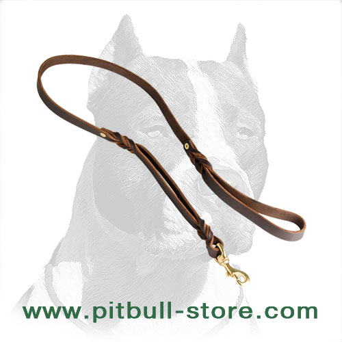 Dog leash of durable leather with soft handle